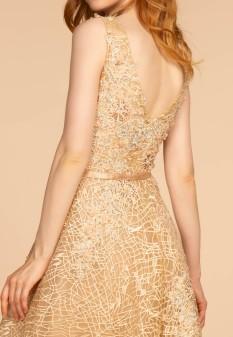 3D Floral Applique Embellished Lace A-Line Dress w/ Deep Illusion V-Neck in Champagne