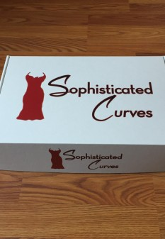 Sophisticated Curves Fashion & Style Box