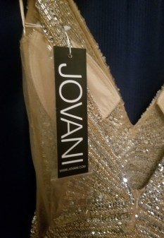 Gold Miss Pageant Dress by Jovani