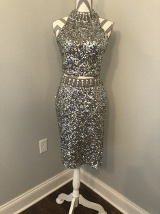 Silver Shail K. Two Piece Cocktail Dress