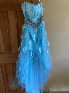 Jovani Turquoise and Feather dress