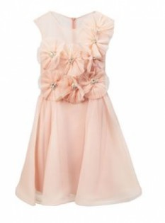 Soft Pink Dress by Forever Unique