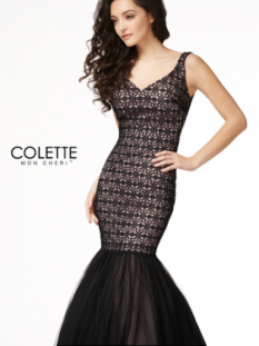 Colette Overlay lace w/ tulle #CL18303