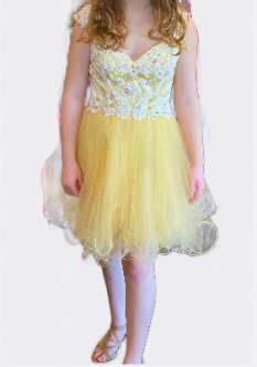 Blush Buttercup Short Tulle Dress with Lace Applique style - 9877