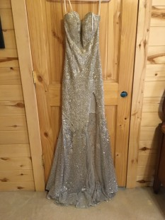 Silver beaded Miss pageant dress