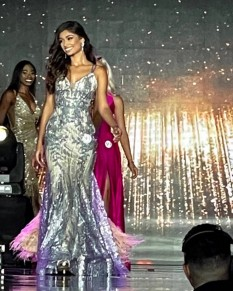 Gray and Tan Sequins Miss Pageant Dress Camille La Vie