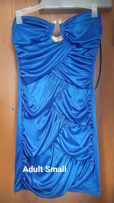 Blue Pageant Dress