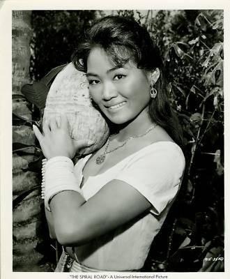 Judy Dan